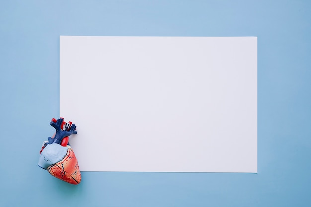 Realistic heart and white paper