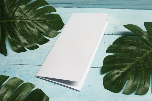 Realistic mock up of booklet with tropical plant