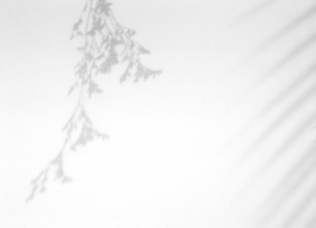 흰 벽에 현실적인 열대 잎 그림자 오버레이 효과