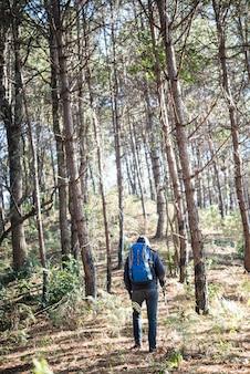배낭과 젊은 남자의 후면 산까지 간다.