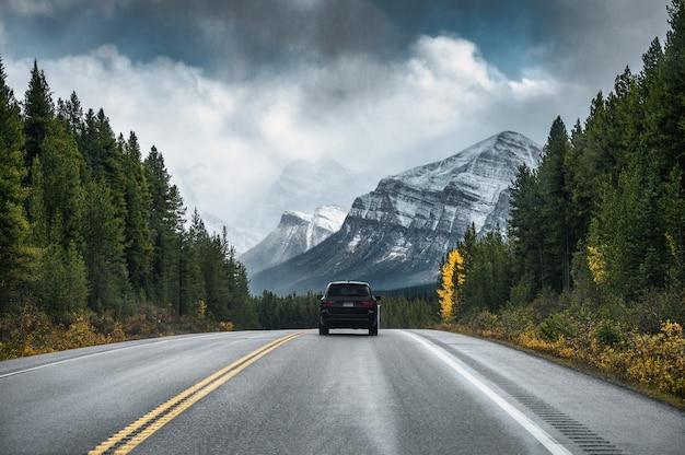 밴프 국립 공원에서 우울한 산과 숲의 고속도로에서 운전하는 자동차의 후면