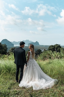 Rear view: aerial view a romantic wedding couple of bride and groom in a magnificent wedding dress, standing on a green field and with mountains