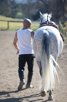 Rear view of a bald cowboy man walking with his white horse
