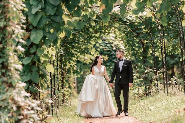 Вид сзади счастливые жених и невеста, проходящие под свадебной аркой, события и традиции