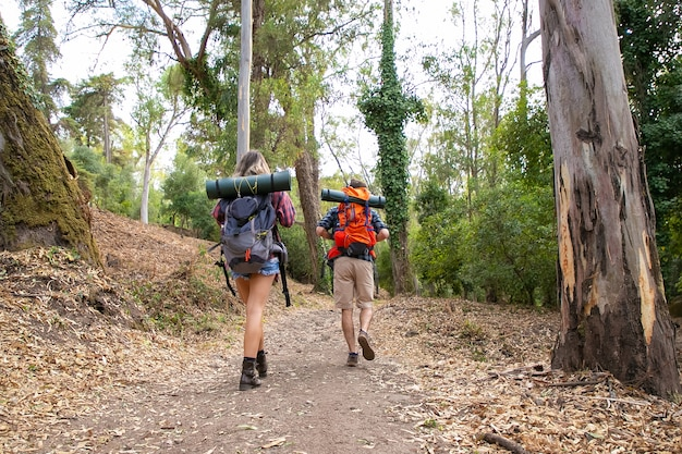 Rear view of hikers walking on mountainous trail. caucasian hikers or traveler with backpacks having trip together and hiking in forest. backpacking tourism, adventure and summer vacation concept