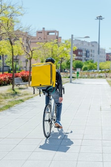 A rear view of male bicycle courier delivering packages in city.