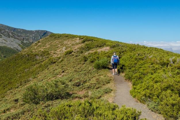 山の尾根を歩くバックパックを持つ女性観光客の背面図