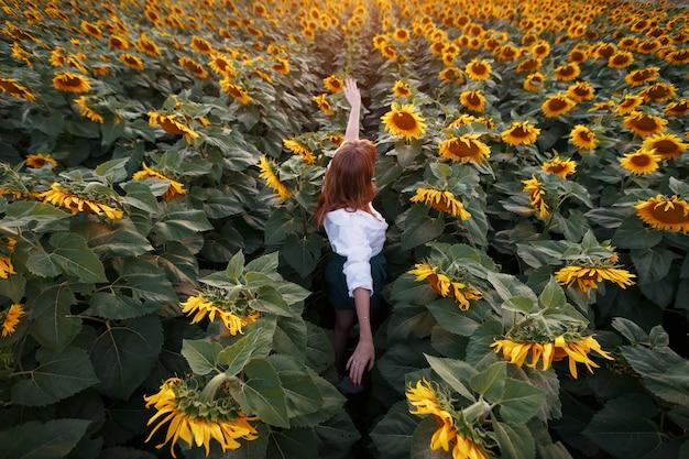 Вид сзади молодой девушки посреди сельской местности подсолнухов на закате.