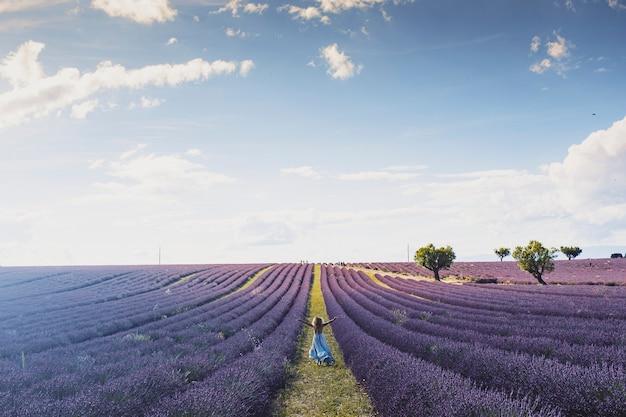 曇った青い空を背景に広大なラベンダーの花畑の中で腕を伸ばして立っているのんきな少女の背面図。ラベンダー畑で腕を上げて自由を楽しむ少女