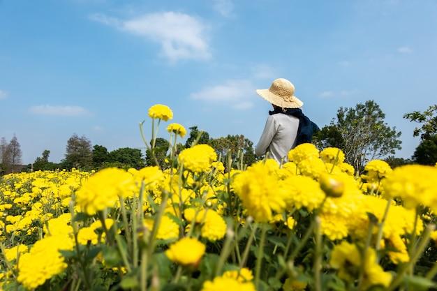 Вид сзади современной женщины стоит на ферме желтых хризантем