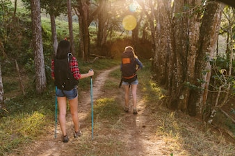 Rear view of two women hiking in forest