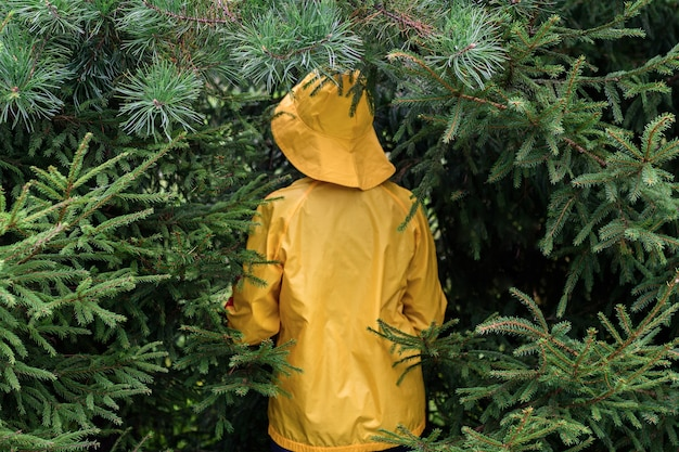 Rear view of a woman in a yellow raincoat in a spruce forest.