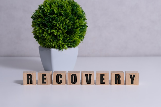 Recovery word written on wood block on table.