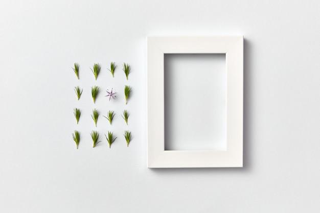 Прямоугольная композиция из зеленой свежей молодой хвои и одного весеннего цветка и пустой рамки на светло-серой стене. плоская планировка, место для текста.