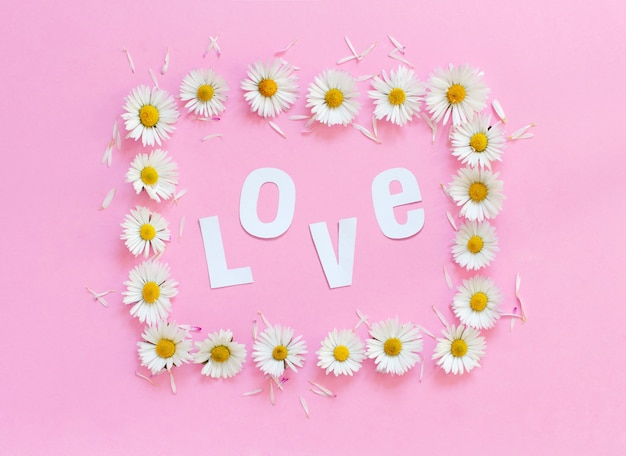 Rectangular daisies frame on a light pink background and text love top view