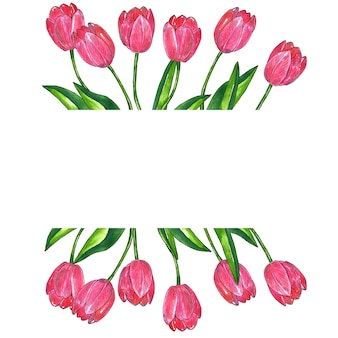 잎 핑크 튤립과 직사각형 프레임 배경. 손으로 그린 수채화 및 잉크 그림. 외딴.