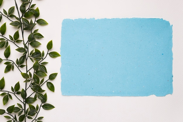 Rectangular torn blue paper near the artificial leaves on white backdrop