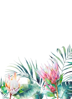 Rectangular tropical frame. botanical card design with floral elements and leaves on white background. greeting or wedding template with exotic protea flowers, banana leaves and palm tree.