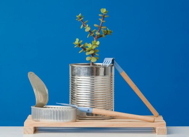 青い背景と木の板にリサイクル缶詰植物