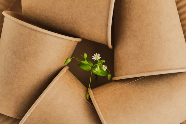Переработка или концепция нулевых отходов, из одноразовых картонных стаканов с зеленой веткой с листьями