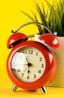 明るい黄色の背景にレトロなスタイルの赤い目覚まし時計。鍋の花の近く。デスクトップ。