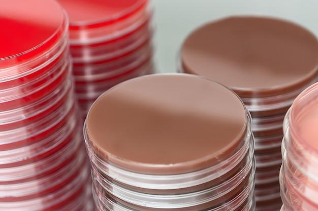 스택에 초점을 맞춘 미생물학 실험실의 빨간색과 갈색 페트리 접시 스택