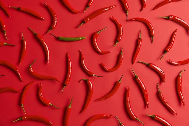 빨강 및 녹색 뜨거운 멕시코 칠리 페 퍼 패턴. 양념과 매운 요리를위한 뜨거운 신선한 야채. 농업과 신선한 음식. 고소한 식재료 조성