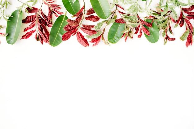 白地に赤と緑の葉のパターン。