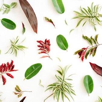 赤と緑の花びらと白い背景の葉のパターン。
