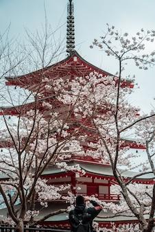빨간색과 흰색 일본 사원