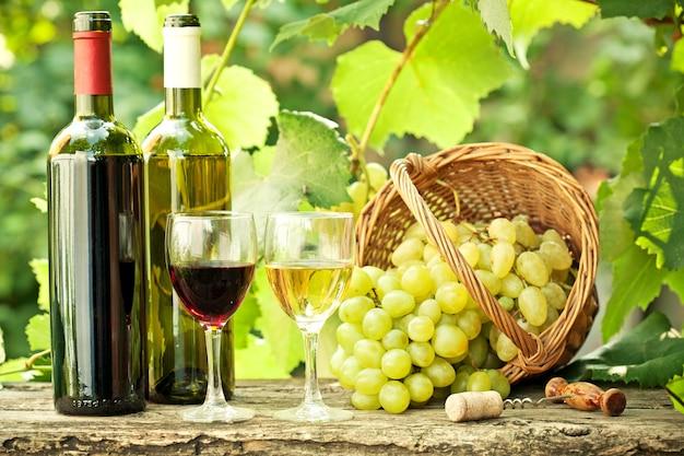 春にブドウ園に対してバスケットに赤と白のワインボトル、2つのグラスとブドウの束