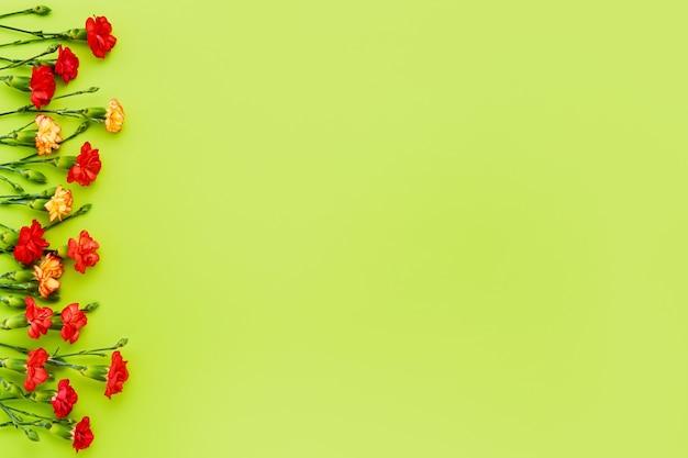 Красные и желтые цветы гвоздики на зеленом фоне.