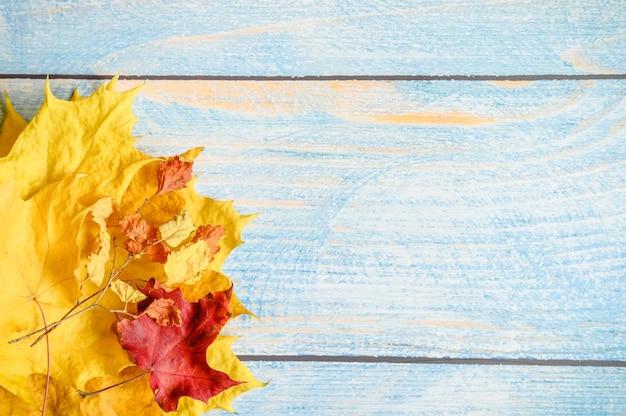 Красные и желтые сухие осенние кленовые листья и осенние ветки на синем деревянном столе или фоне. осенние материалы для детского творчества и поделок. место для текста
