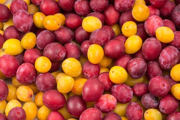 Красные и желтые свежие спелые сливы на столе на рынке