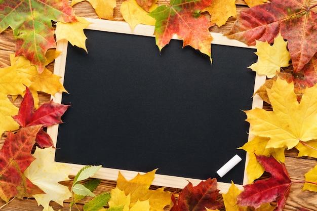 黒板の周りの赤と黄色のカエデの葉。学校に戻る。