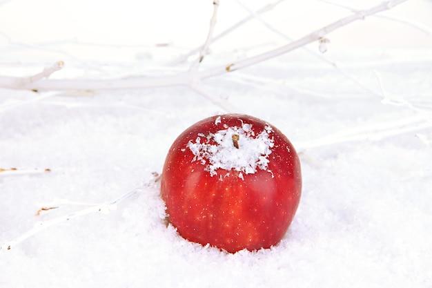 雪の中の赤いリンゴがクローズアップ