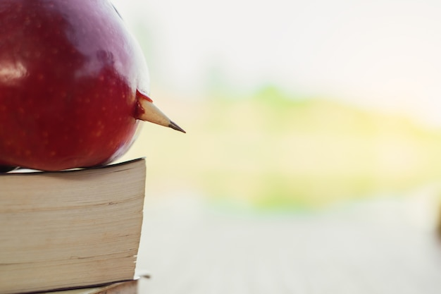 A red apple and pencil sitting on top of a stack of school books with natural background.