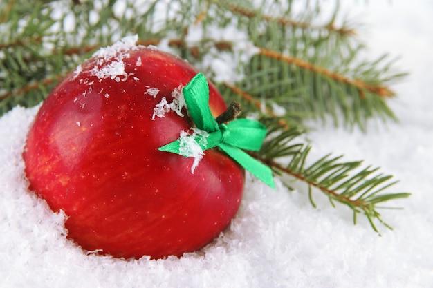 Красное яблоко с еловыми ветками в снегу крупным планом