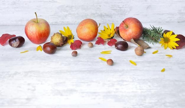 赤いリンゴ、白い背景の上の秋の静物の葉と茶色、黄色の花
