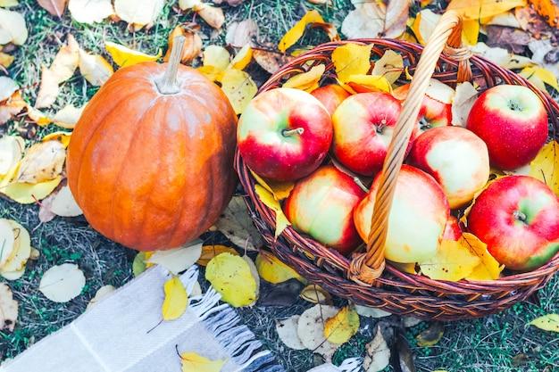 고리버들 에코 바구니에 빨간 사과와 노란 단풍의 배경에 호박.