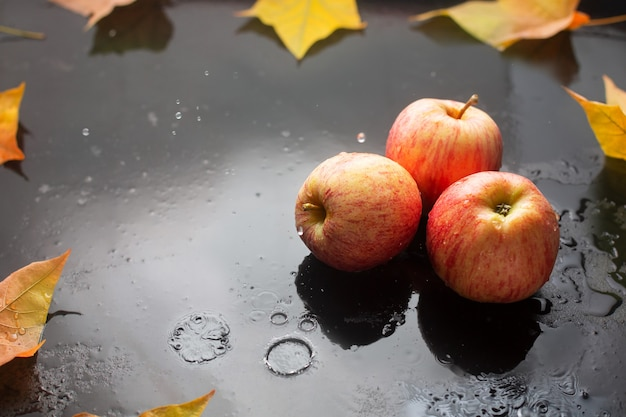 Red apples and oak leaves on a dark with raindrops