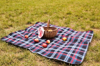 Red apples on blanket with picnic basket in the park