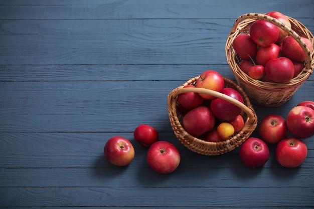 파란 나무 바탕에 빨간 사과