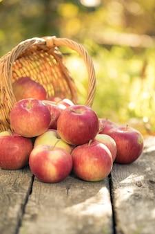 屋外の秋の木製のテーブルに赤いリンゴ。感謝祭の休日のコンセプト