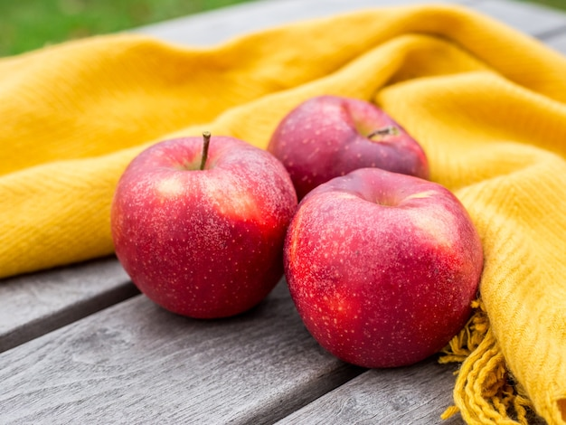 Red apples on orange blanket on a wood in the garden