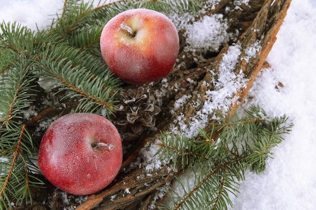Красные яблоки с еловой веткой на коре в снегу крупным планом