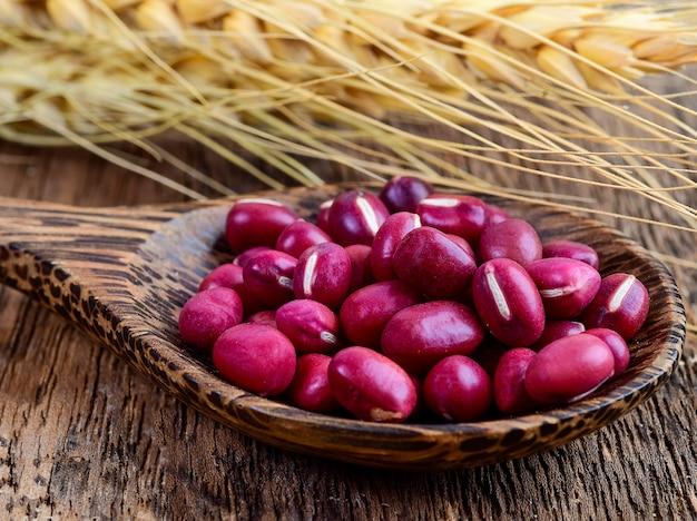 木製のスプーンの木の小豆