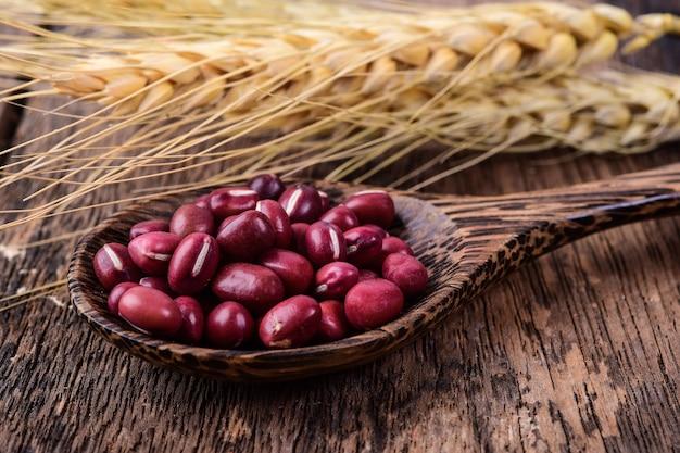 Красная фасоль в деревянной ложке