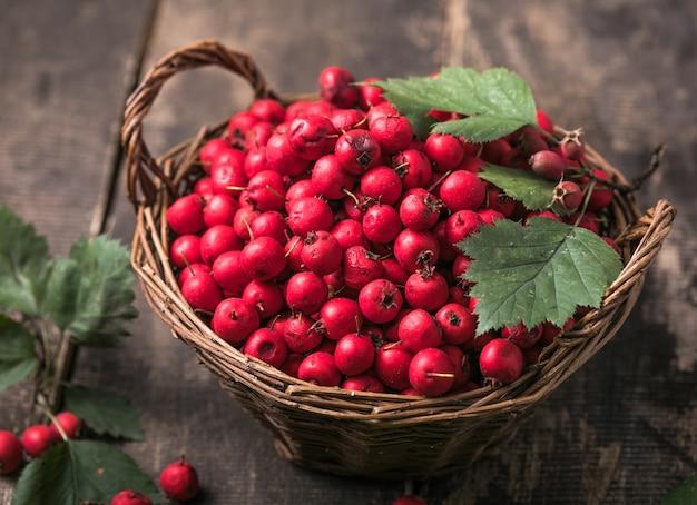 木製のテーブルの上に立っているバスケットの新鮮なサンザシの赤い果実