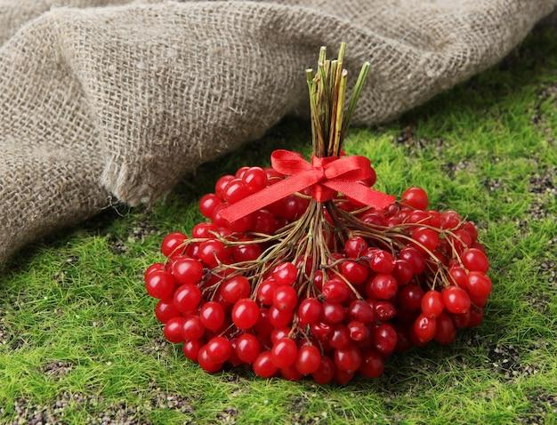 Красные ягоды калины на фоне зеленой травы